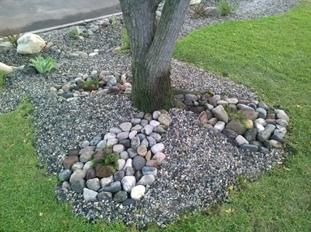 Gravel And Rock Landscaping Under Tree