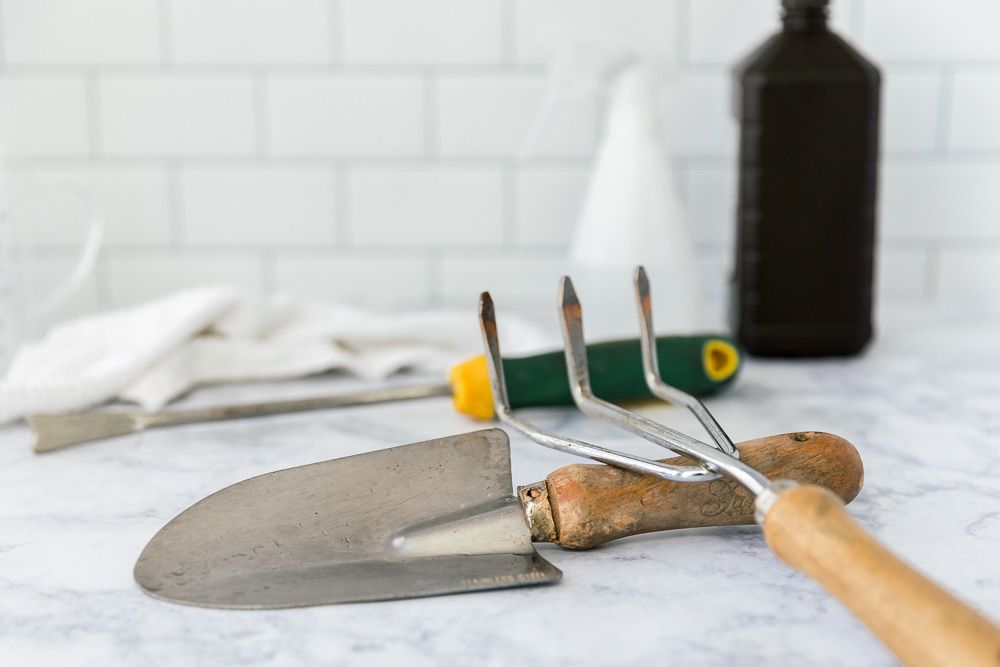 Sanitize garden tools with hydrogen peroxide