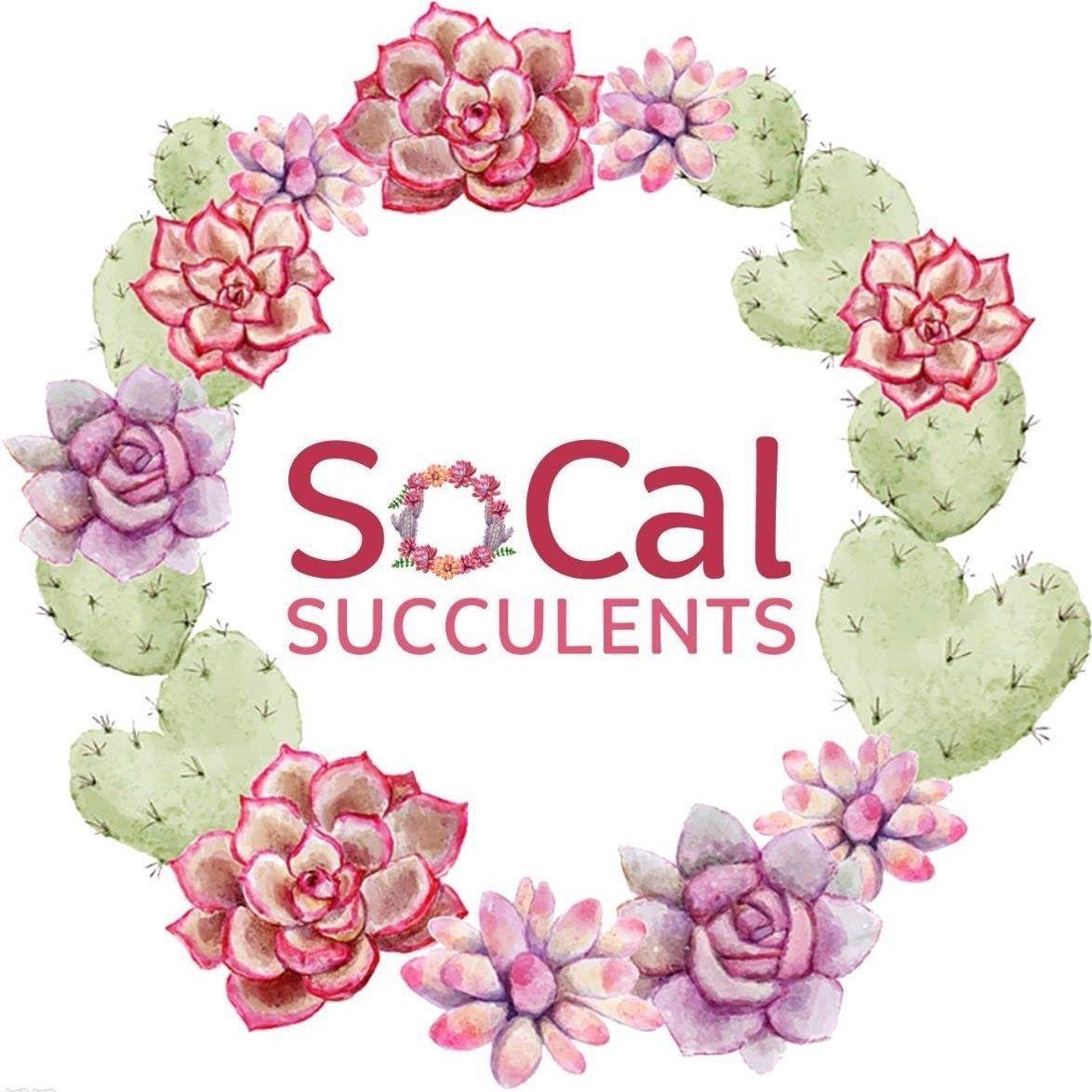SoCal Succulents