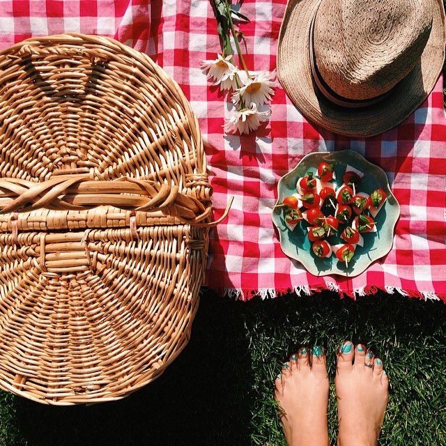 classic picnic with checkered blanket