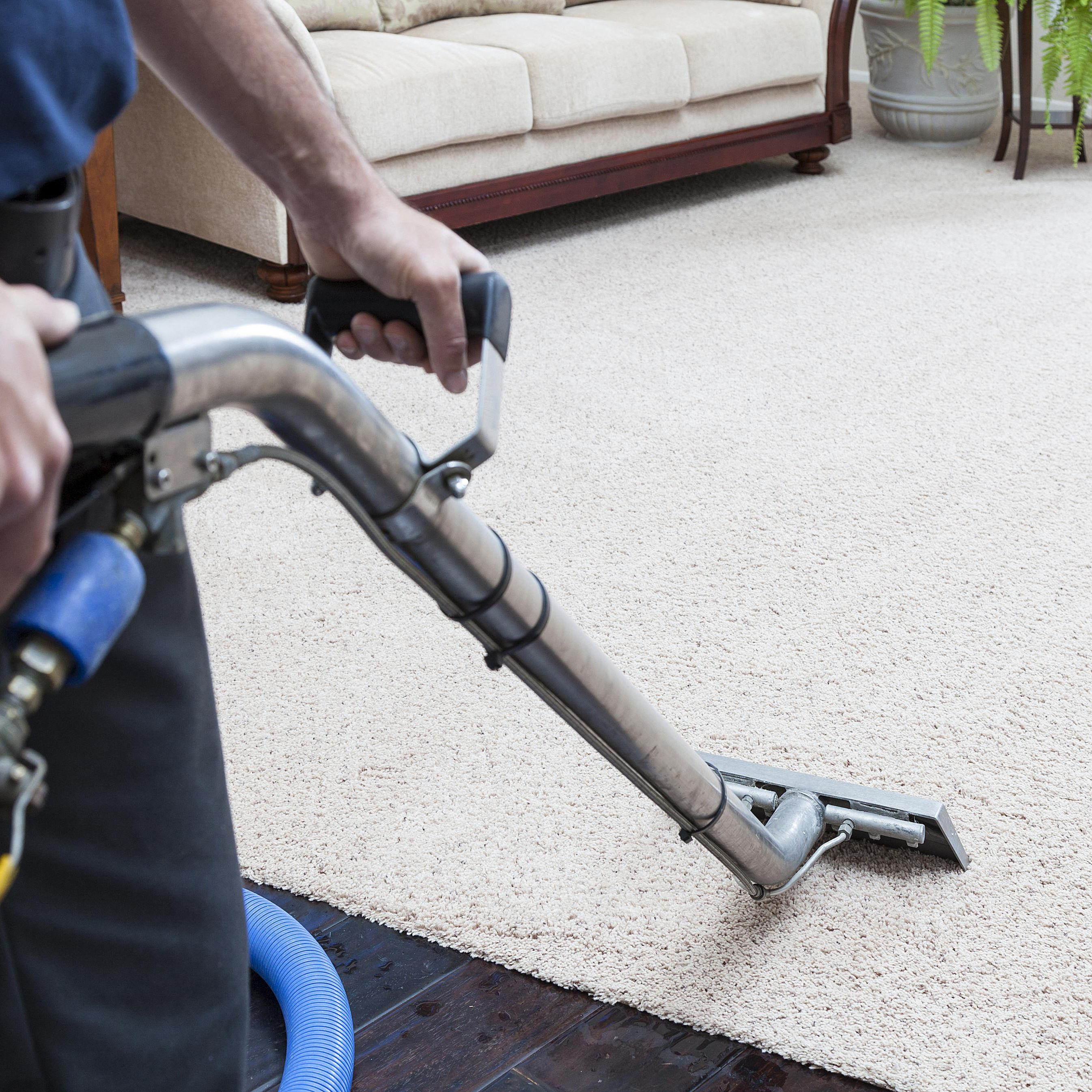 Carpet Steam Cleaning Professional Vs Diy