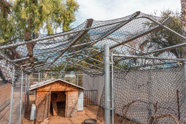 Chicken coop protected with metal net fencing and gate door