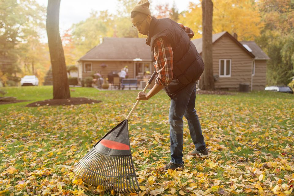 Mid adult man raking in autumn leaves garden