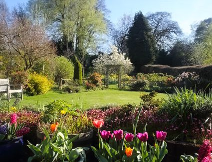 When should i plant my spring blooming bulbs for What should i plant in my garden