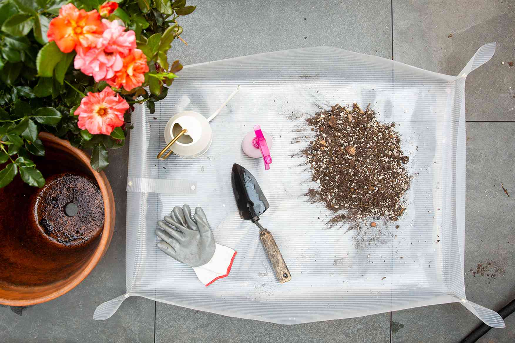 Materials and tools to grow roses in pots