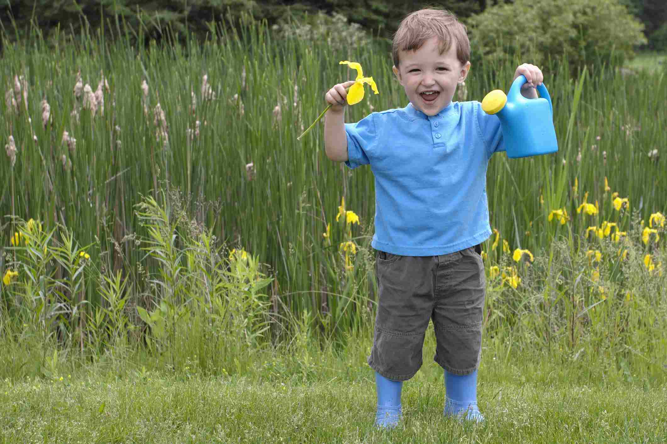 Niño con balde azul vestido de azul con telón de fondo de flores de bandera amarilla en pantano