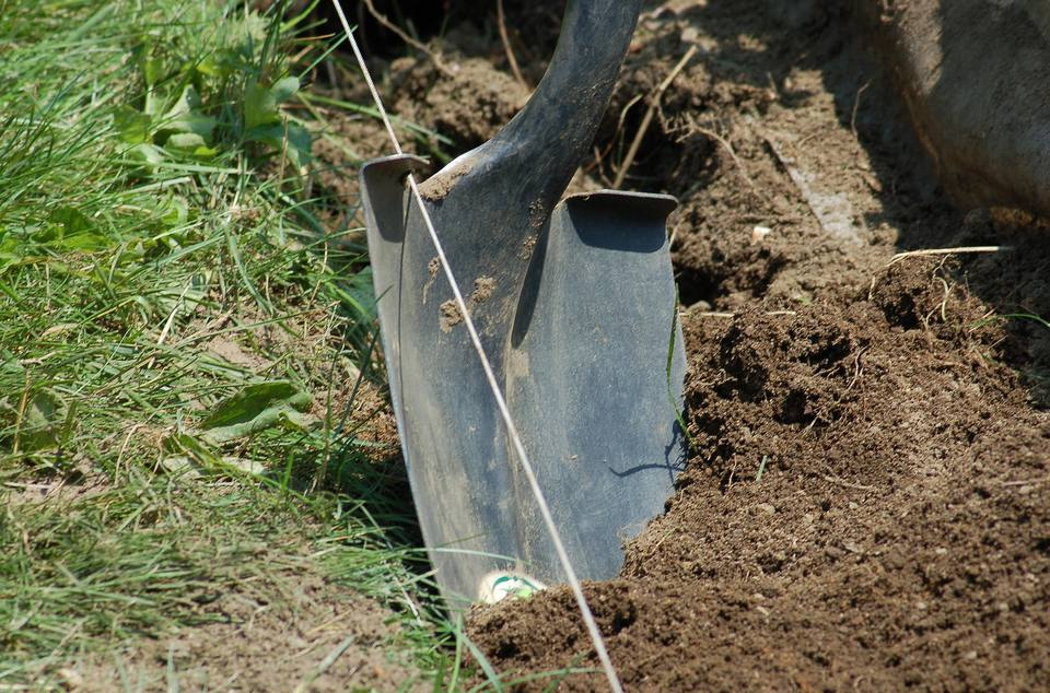 Shovel plunged into the earth.