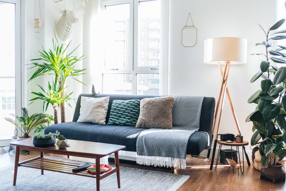 A blue couch in a bright living room with lots of plants.