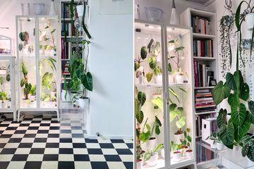 Robin Schouten's DIYed IKEA cabinet greenhouse cabinet hacks
