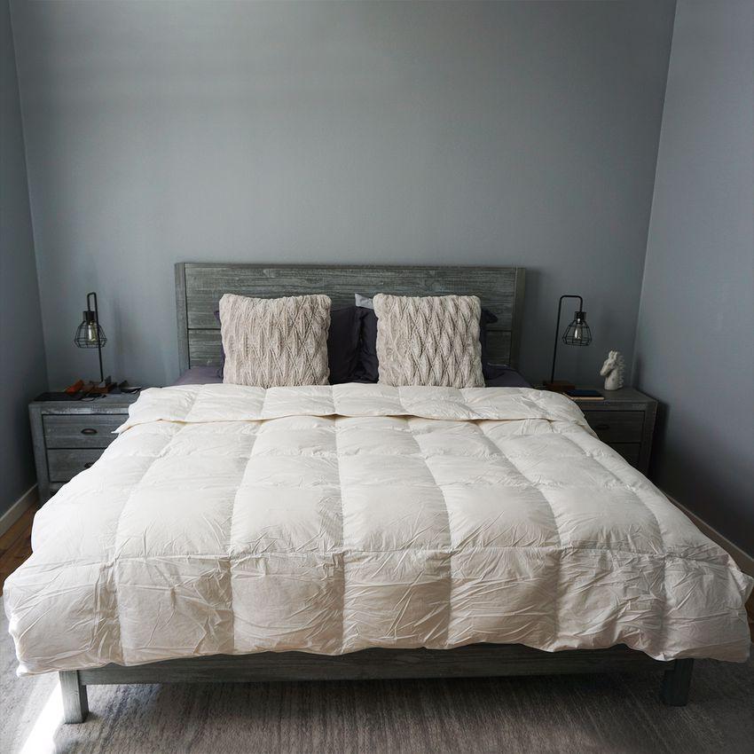 Italic Slumber Down Comforter