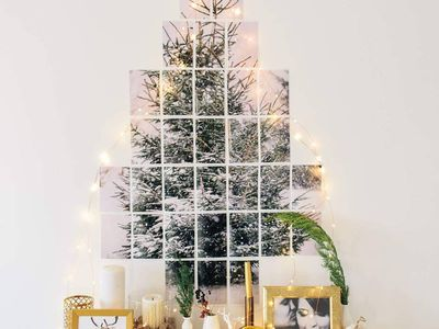 14 Christmas Tree Alternatives for the Holiday Season