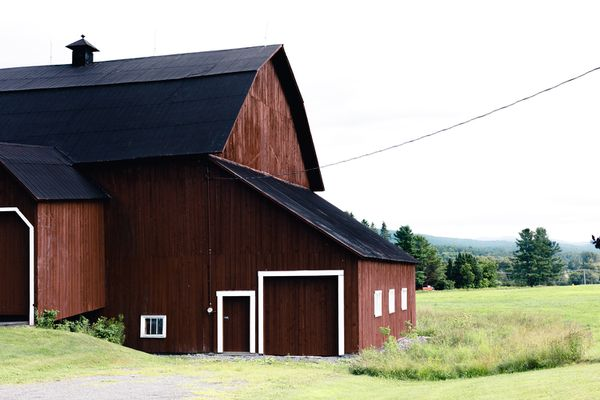 Homesteading farm with dark brown walls and bright white trim next to field
