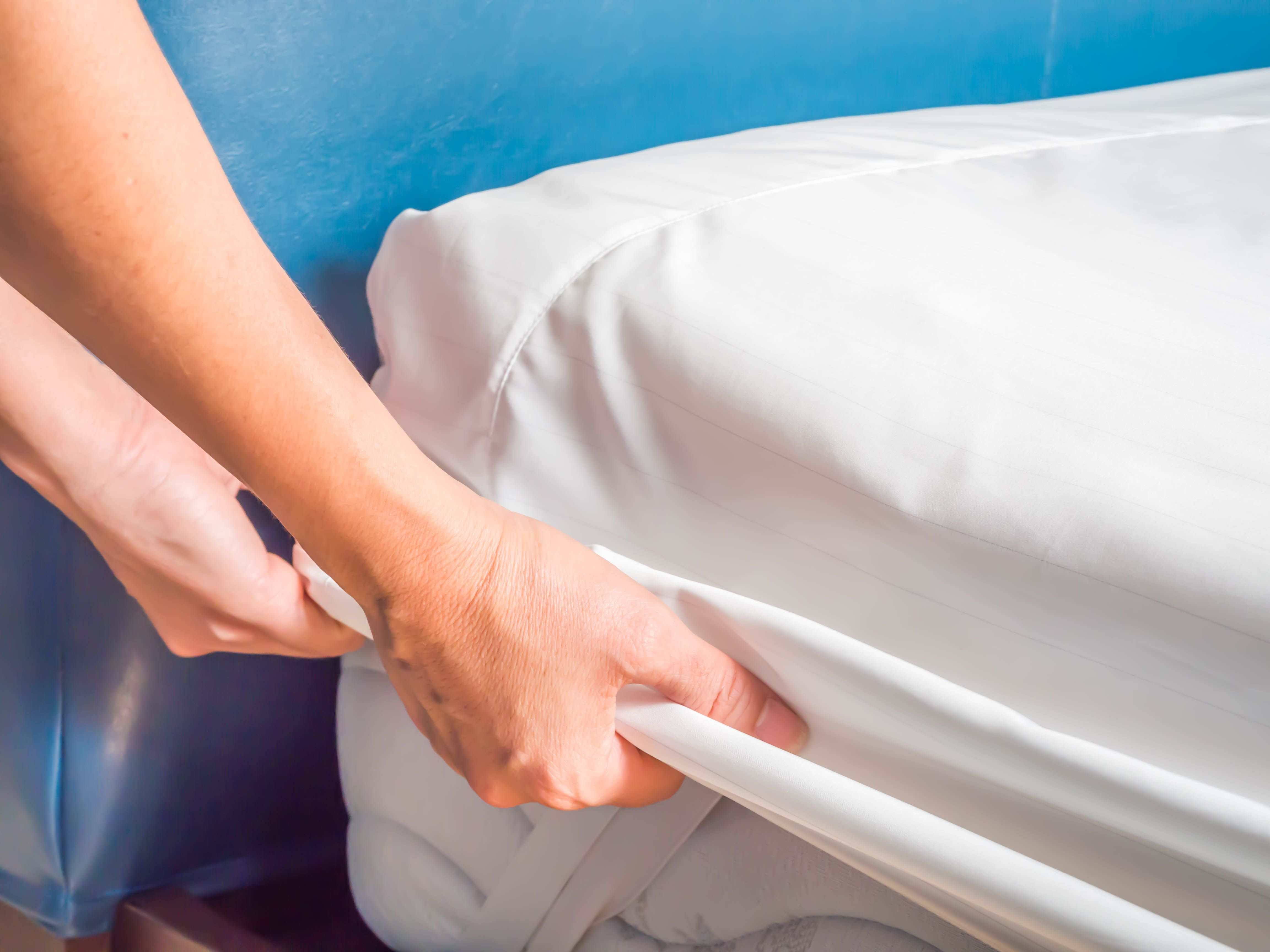 The 8 Best Bed Bug Mattress Covers Of 2019