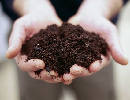 Person holding handful of soil