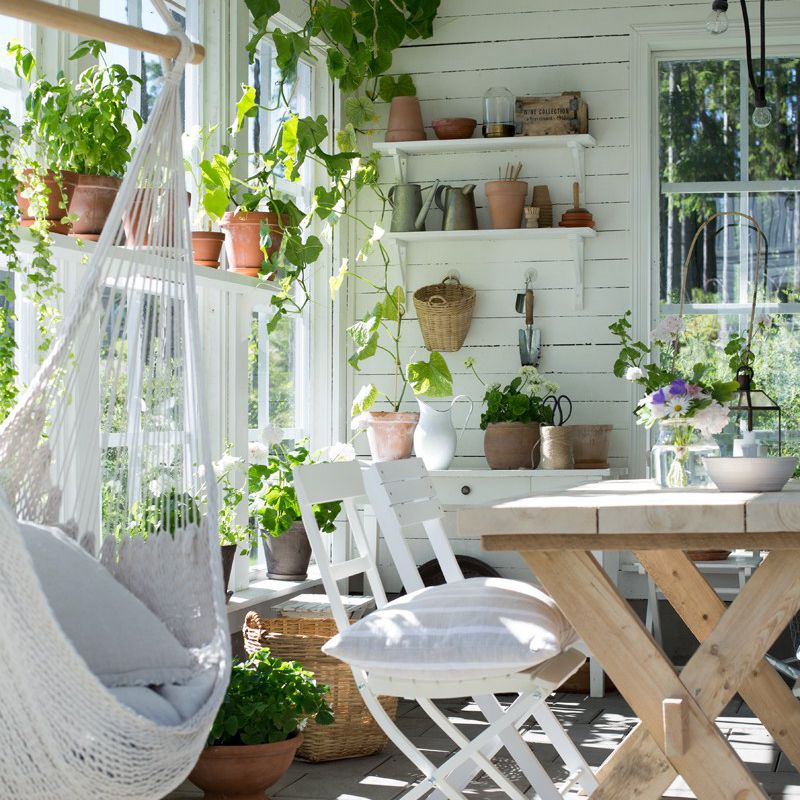 Sunroom filled with plants