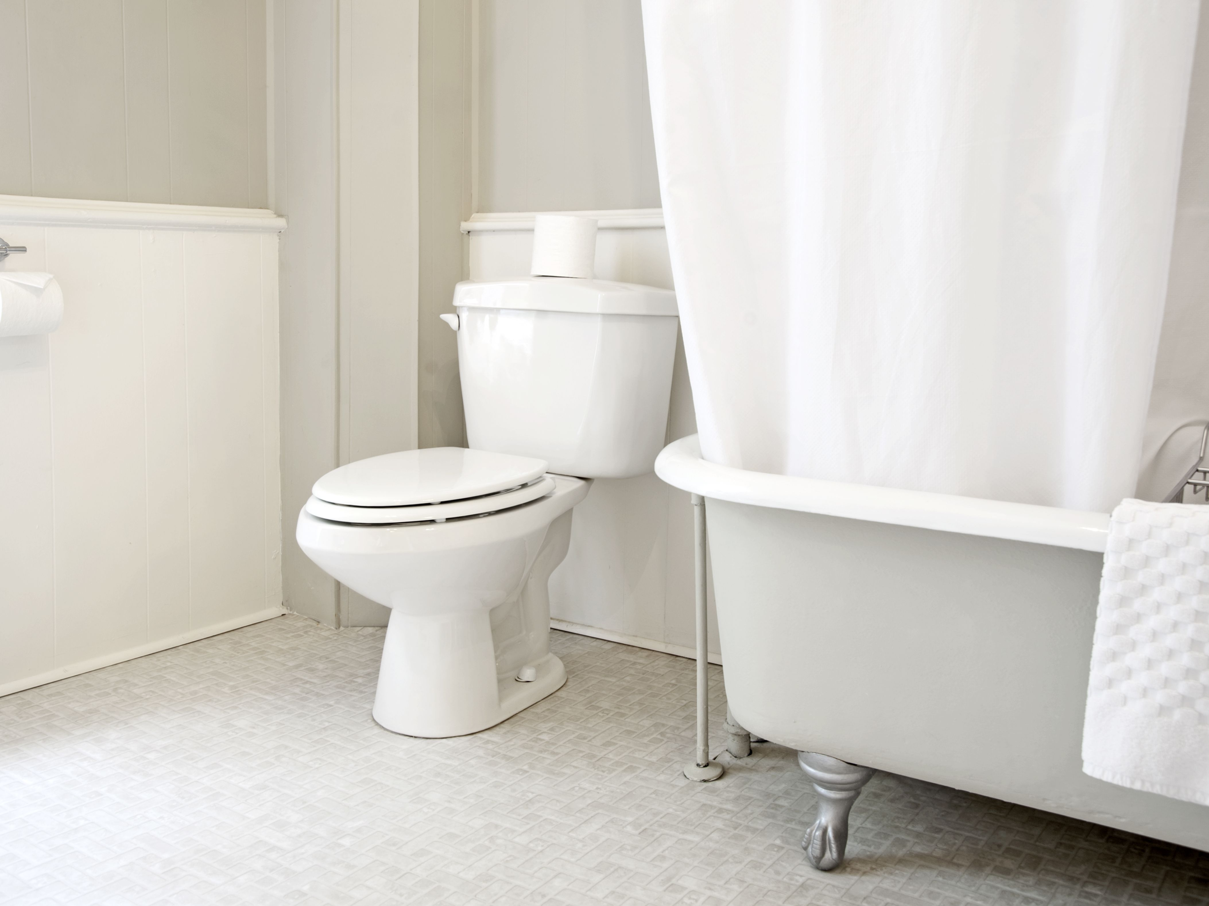 Picture of: Tightening A Loose Toilet Seat