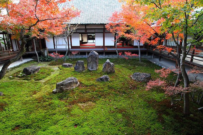 Red Japanese maples flanking a moss garden with large stones in front of a simple Japanese house