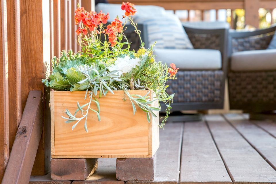 wooden box used as a planter