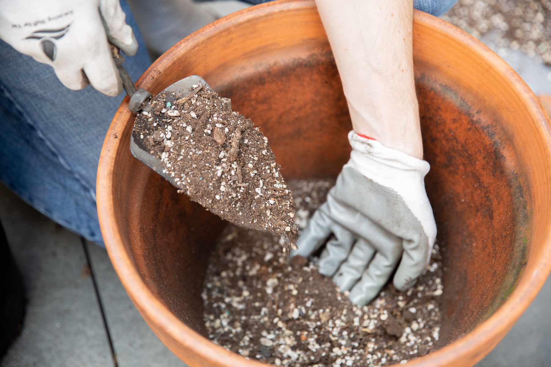 Potting soil mixture placed in large clay pot with small handheld shovel