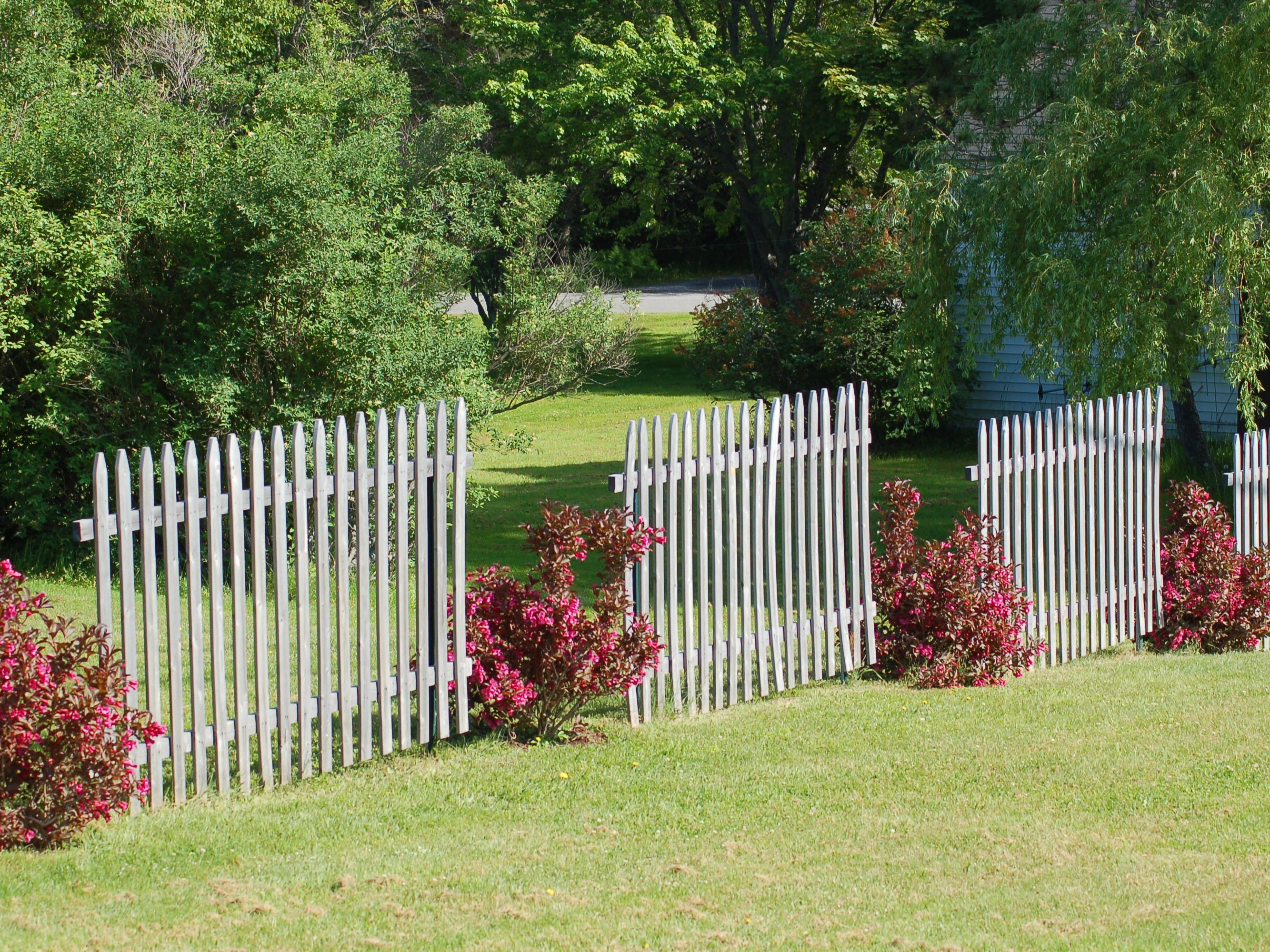 Fence Line Landscaping Ideas For
