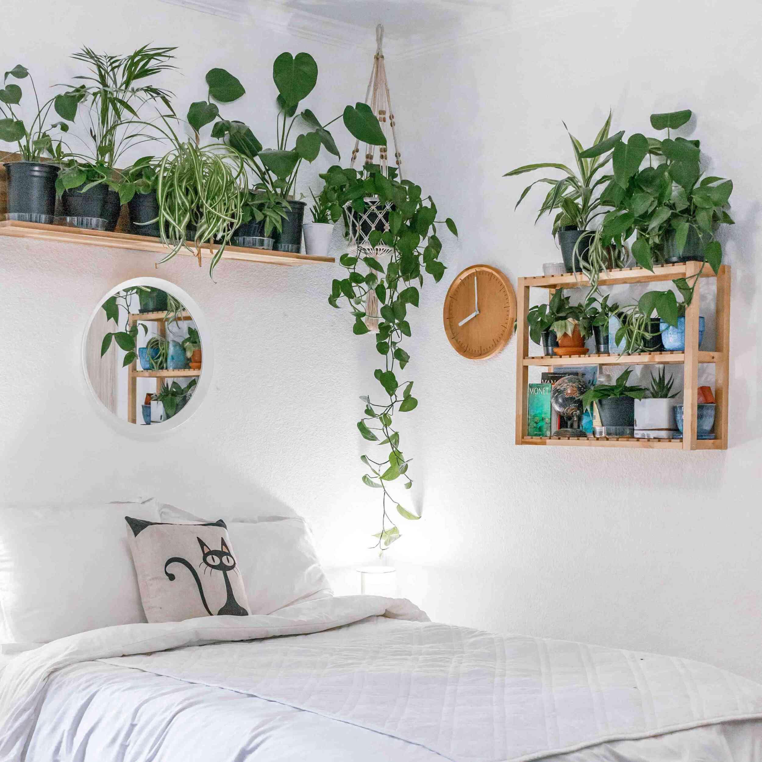 Kessler Ramirez plant shelf