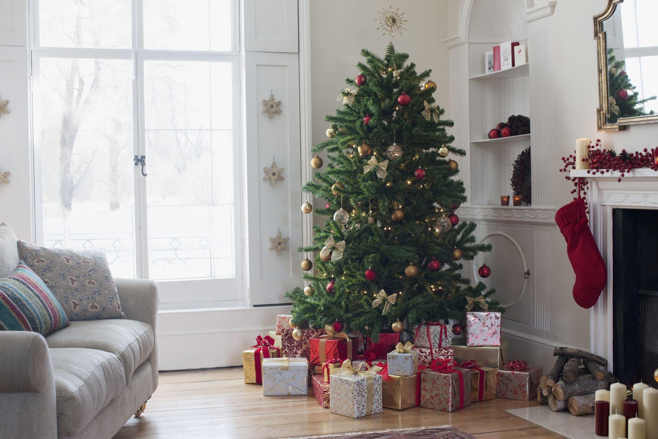 31 Reasons to Celebrate in December