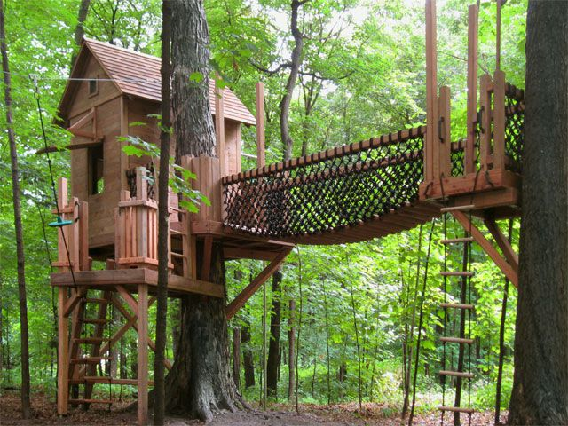 Tree house with separate platform.
