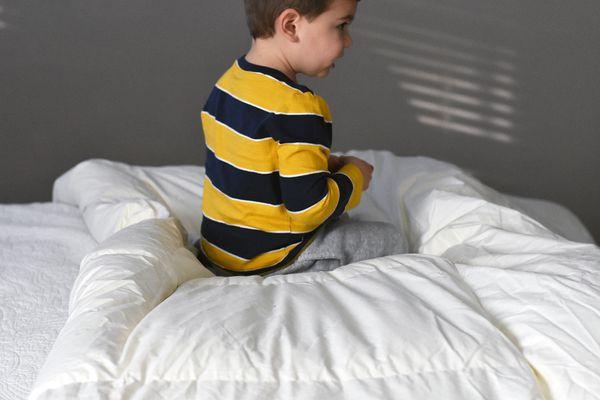 L.L. Bean Permabaffle Box Goose Down Comforter Review