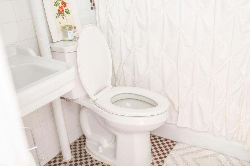 a toilet harbors germs, but so do many other unsuspecting objects around the home