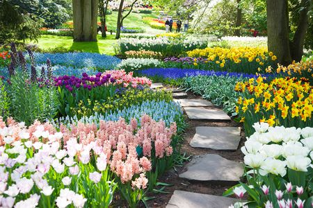 How To Select And Arrange Plants For Flower Beds