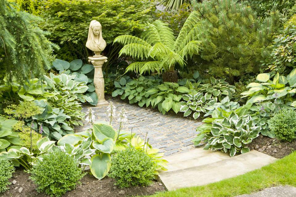 Ferns and hosta line shaded walkway leading to garden statue.