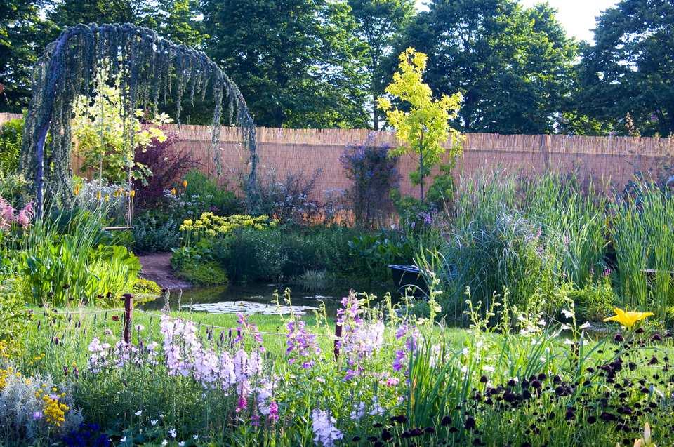 lush garden of flowers