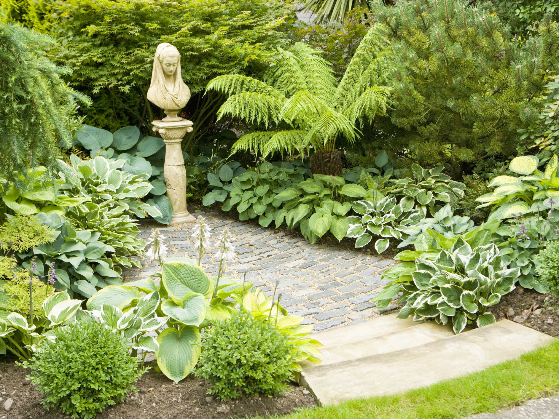 9 Inspiring Shade Garden Ideas