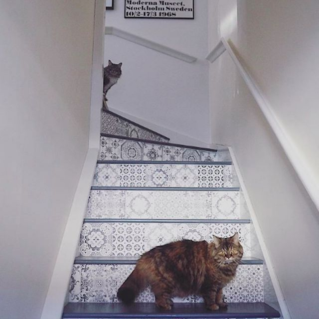 painted stairs with wallpaper