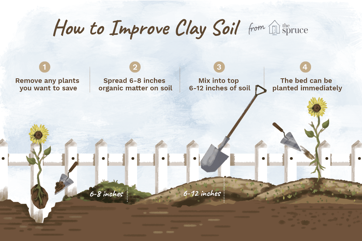 Understanding Clay Soil And How To Improve It