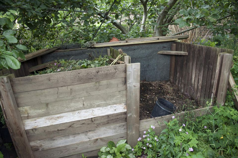 Compost bin in allotment