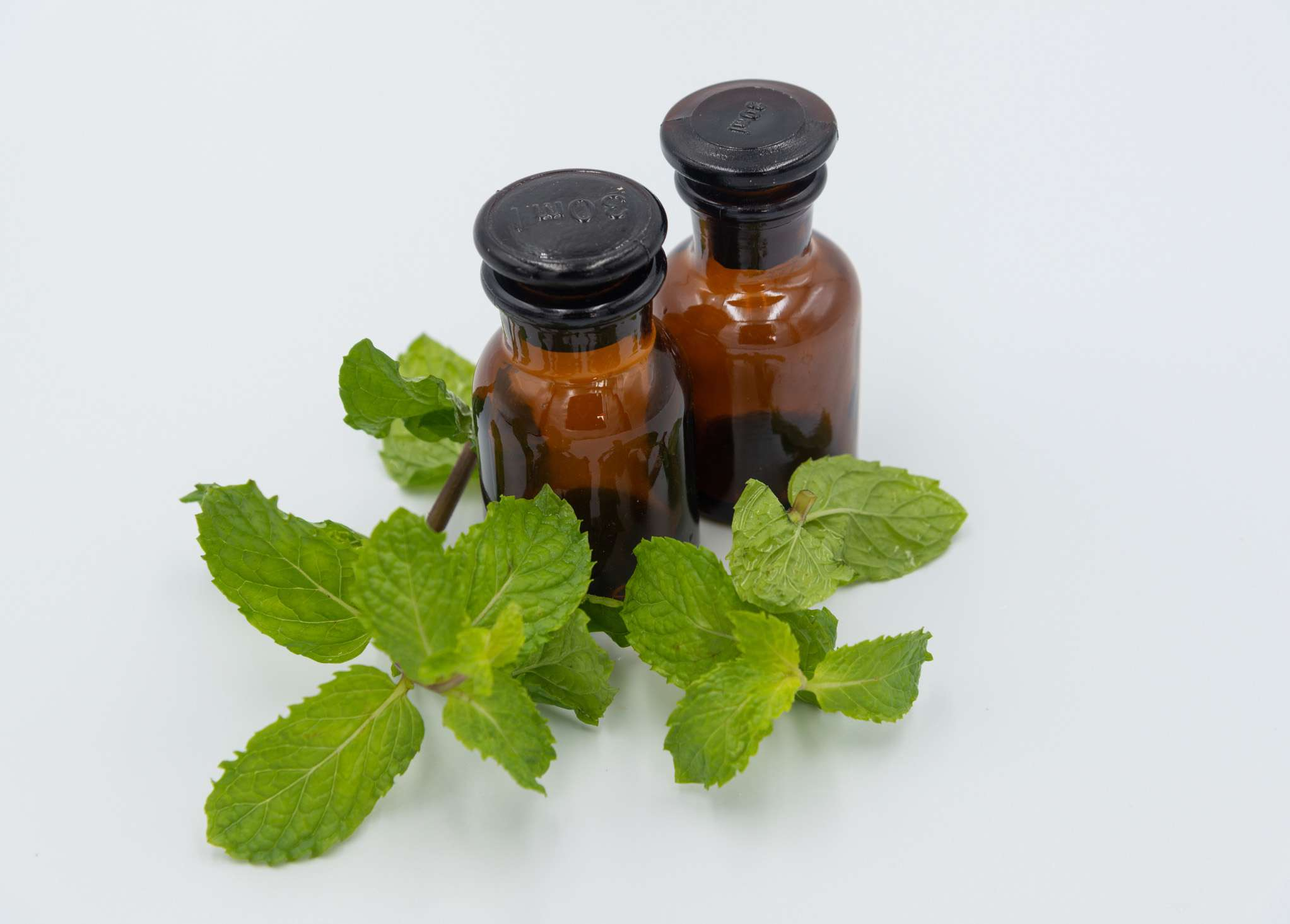 Peppermint oil on white background
