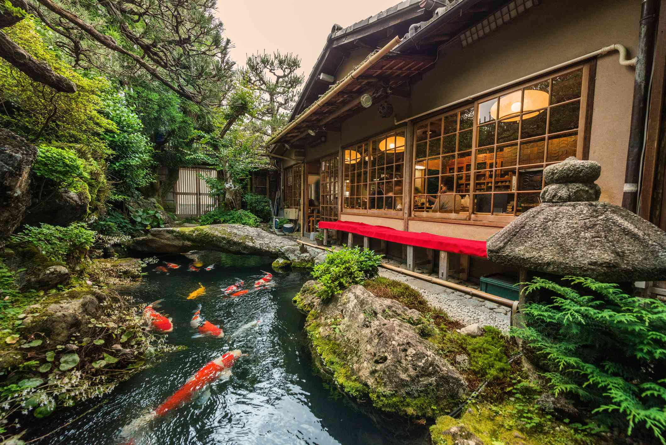 A koi pond and mossy boulders next to a house.