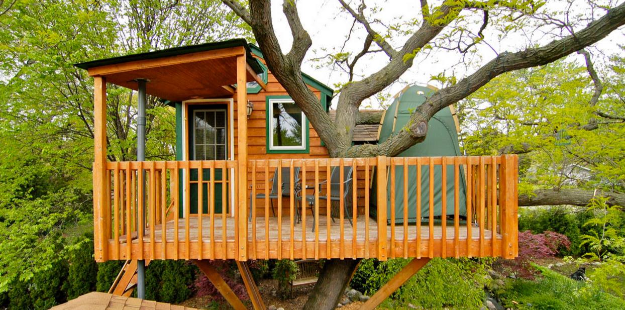 Casa en el árbol moderna y fresca