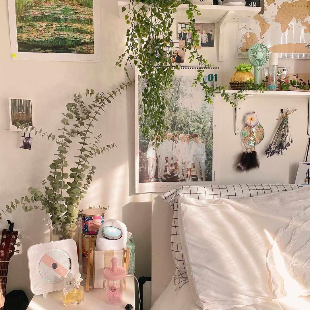 plants in aesthetic room