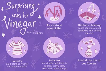 10 Surprising Uses for Vinegar