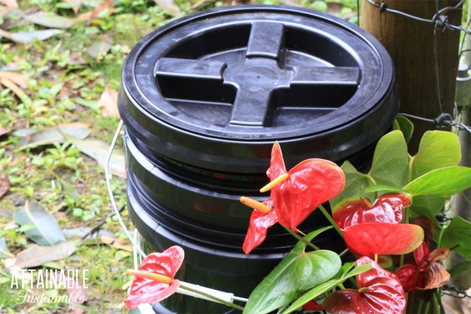 A black plastic worm bin in a yard