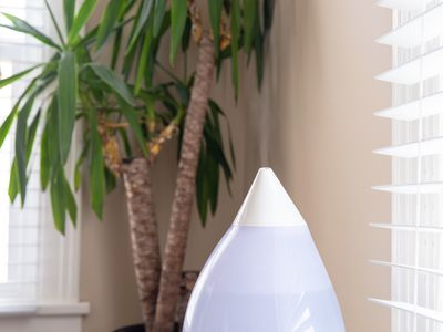 humidifier by a houseplant