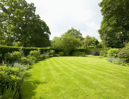 When To Fertilize The Lawn In Spring