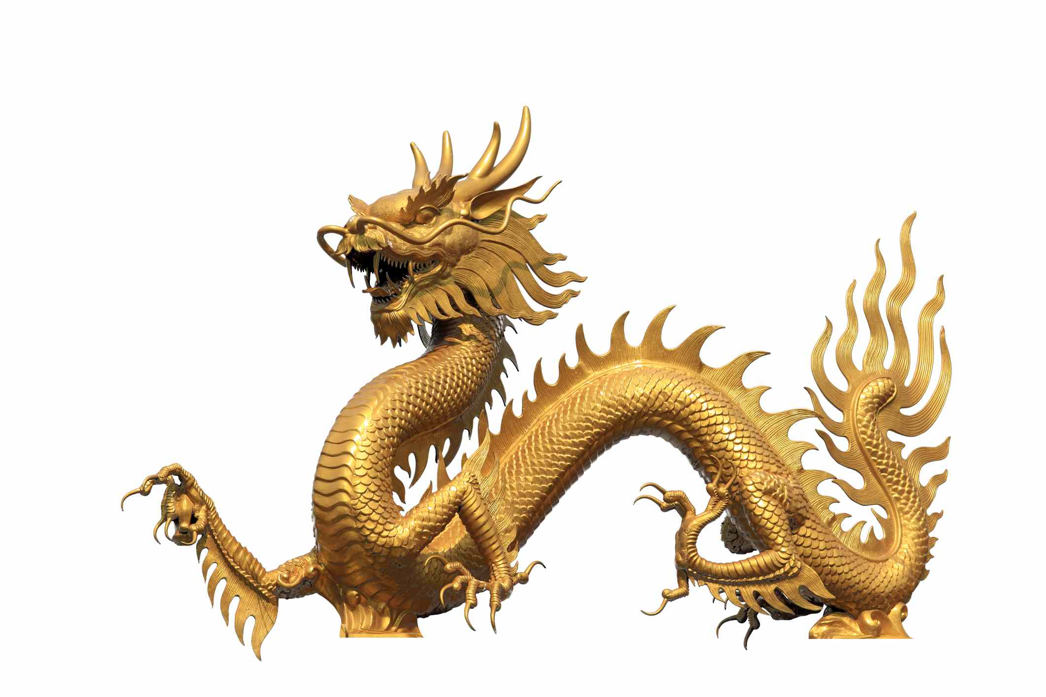 Flaming gold Chinese dragon on white background