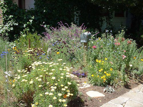 Mailbox Garden Path
