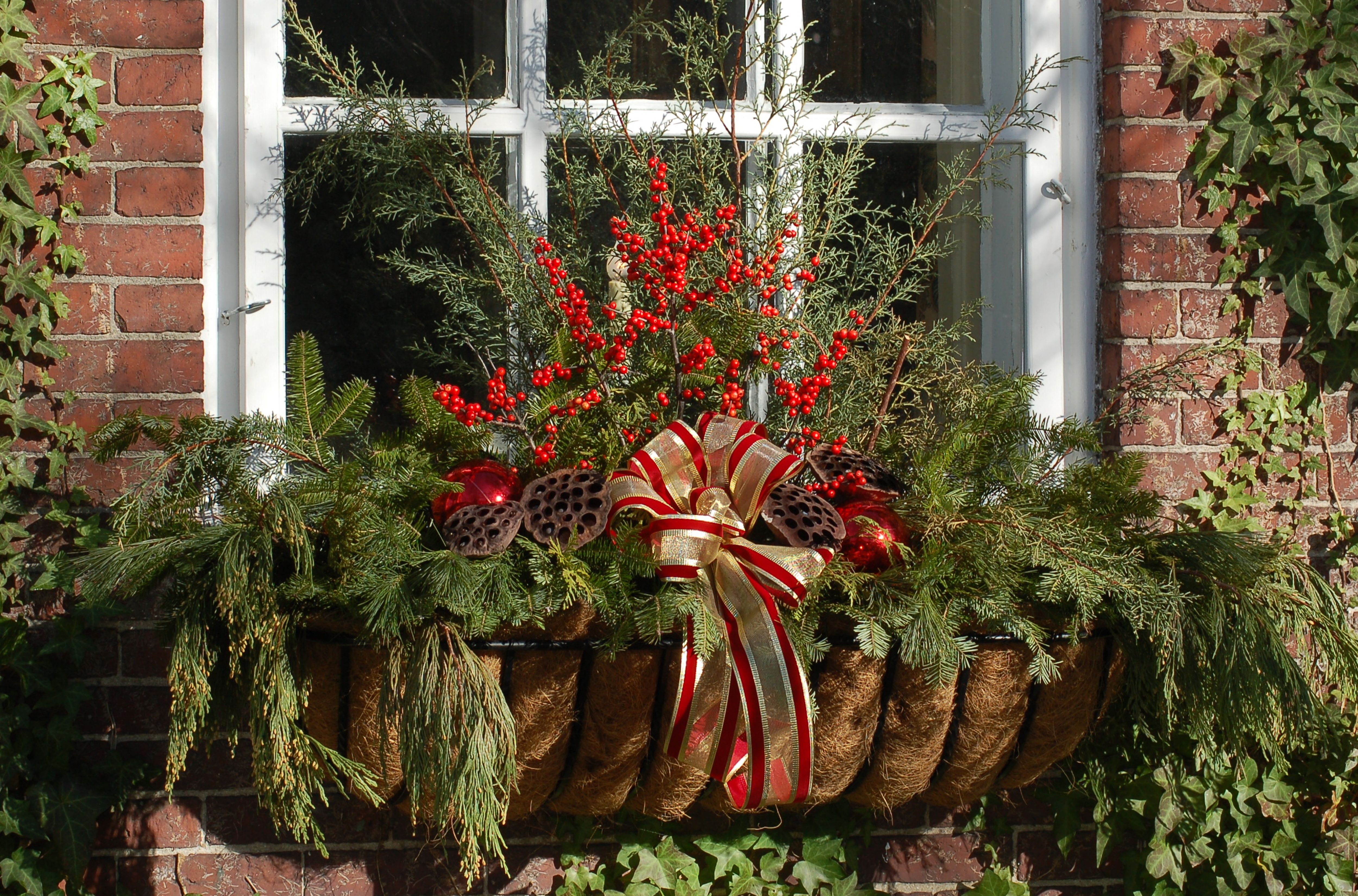 Window box decorated for Christmas with bow, ornaments, winterberry and lotus pods.