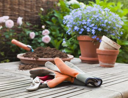 gardening tools