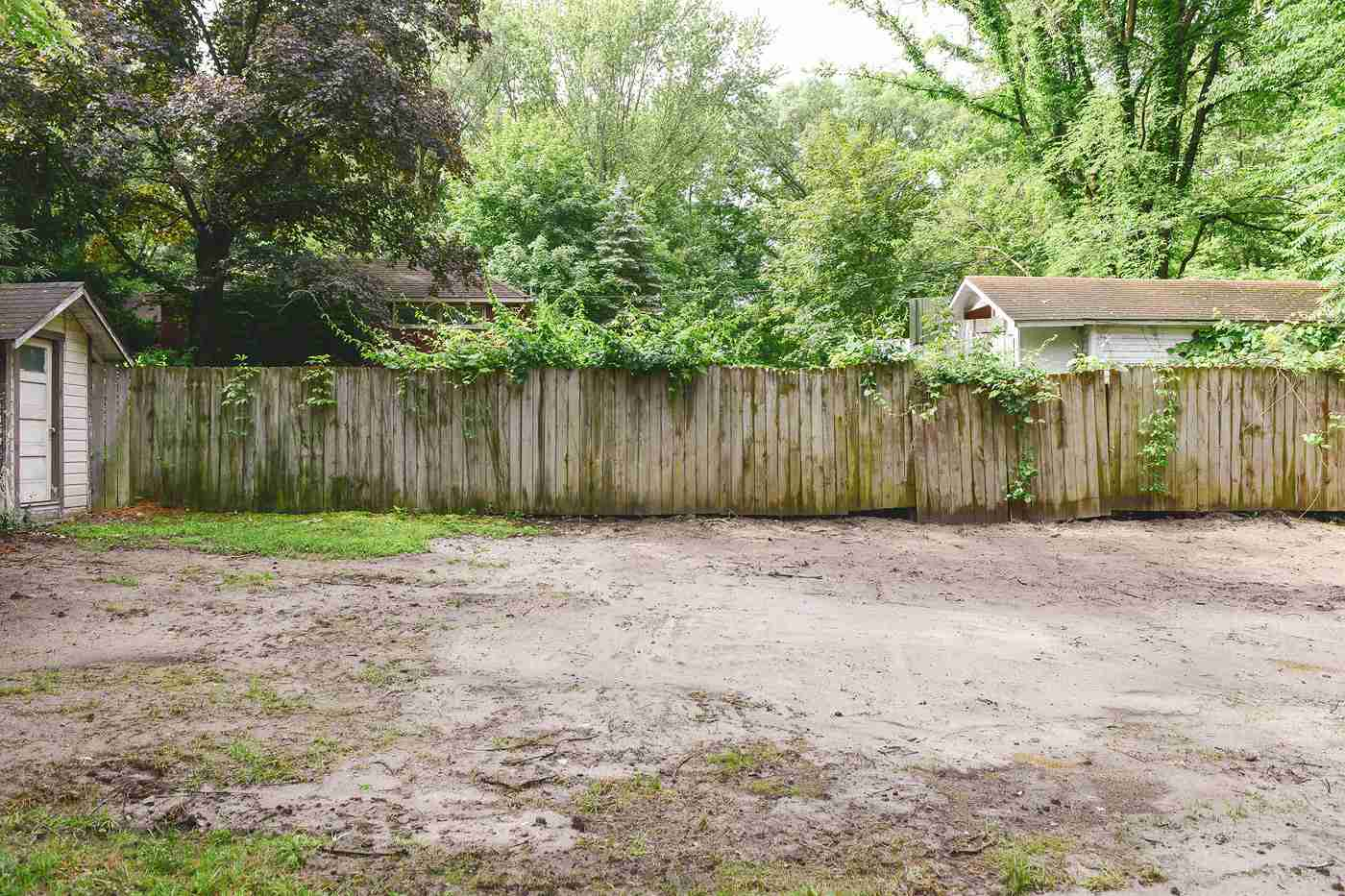 Cambio de imagen del césped del patio trasero - Antes