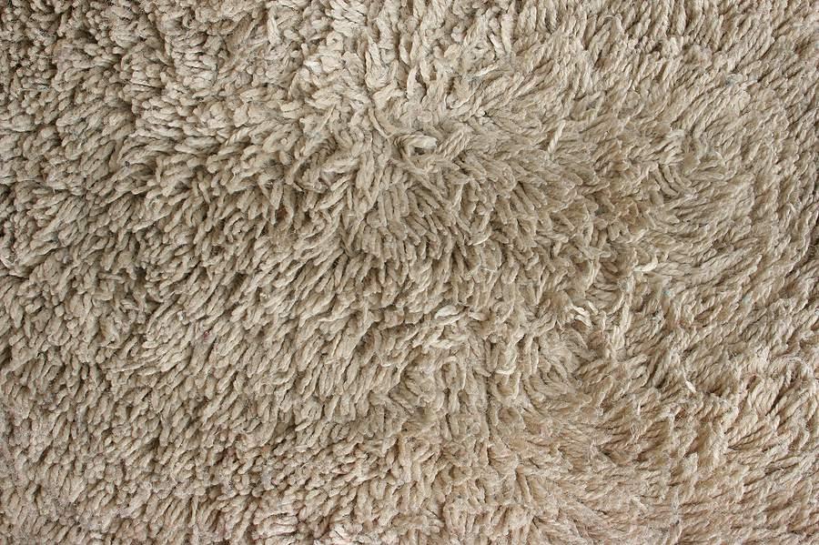 Saxony Carpet Pile